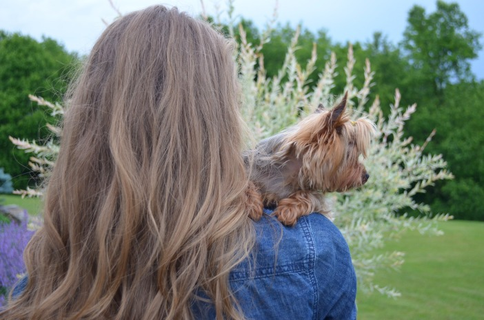 girl and yorkie